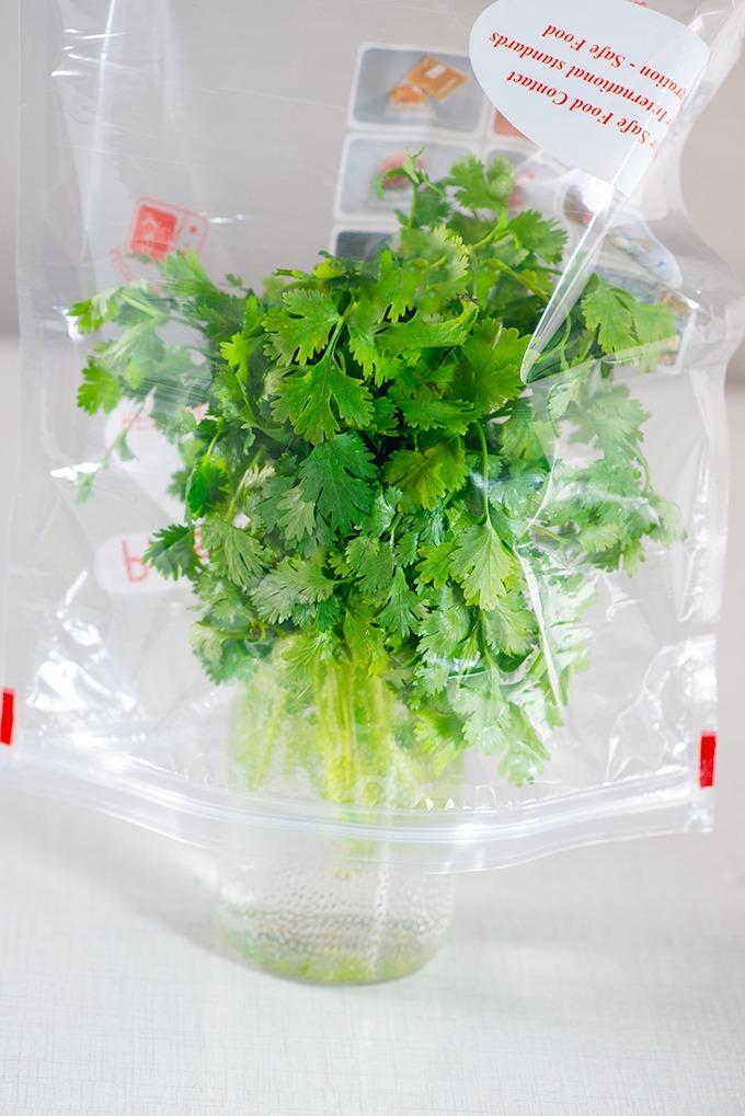 coriander in water with ziplock bag
